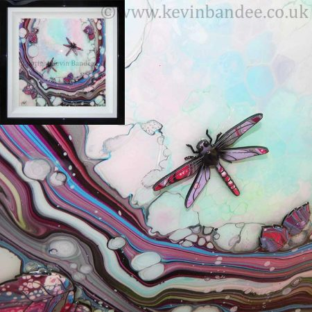 Dragonfly picture organic style gallery
