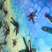 blue turquoise dragonflies