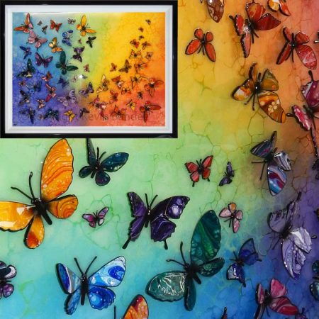 butterfly rainbow gallery
