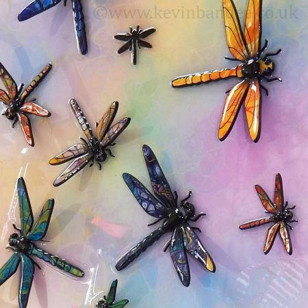 dragonflies in rainbow colours
