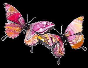 Pink Papilla Ulysses Butterflies