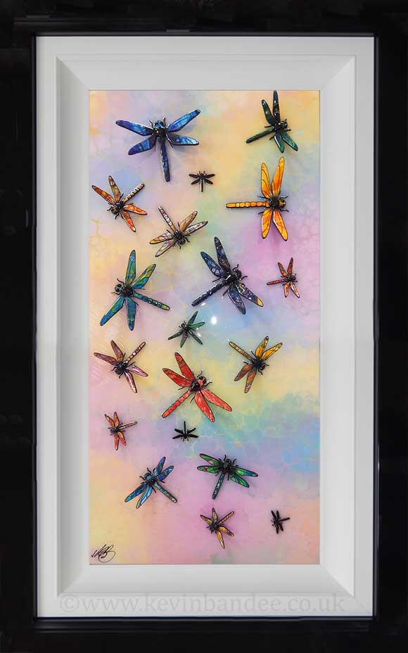 picture of rainbow coloured dragonfly art framed